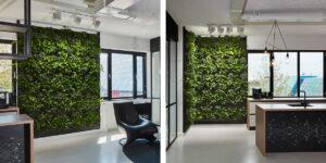 Mobilane LivePanel Indoor plantenwanden iClicks