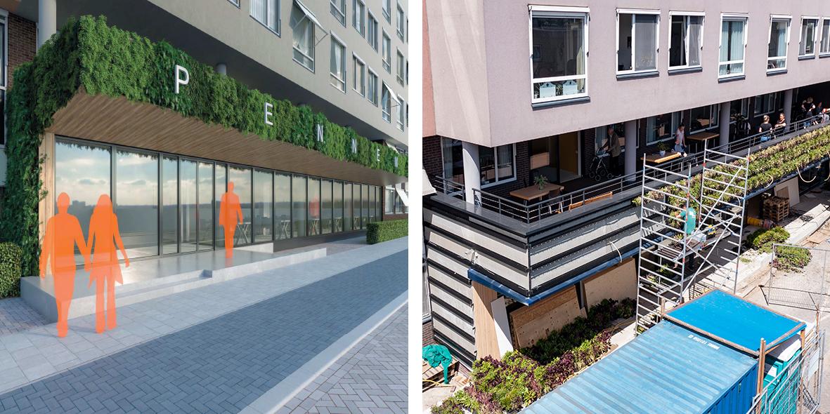 Mobilane website Intext LivePanel Outdoor Groen balkon Pennemes