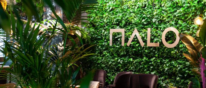 Mobilane LivePanel Indoor green wall MaLo Restaurant